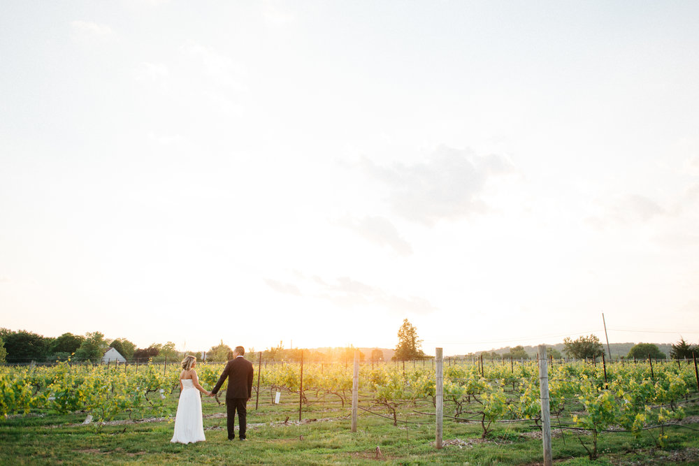 Image by Nino Gallego Studios at Hopewell Valley Vineyard
