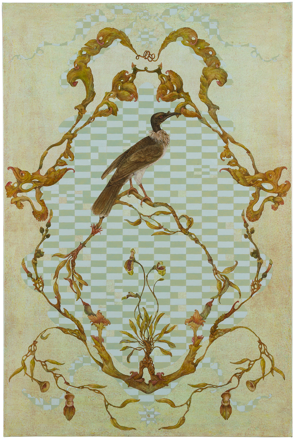 Bauer Brocade -Noisy Friarbird, 2014. Highly Commended Waterhouse Natural Science Prize