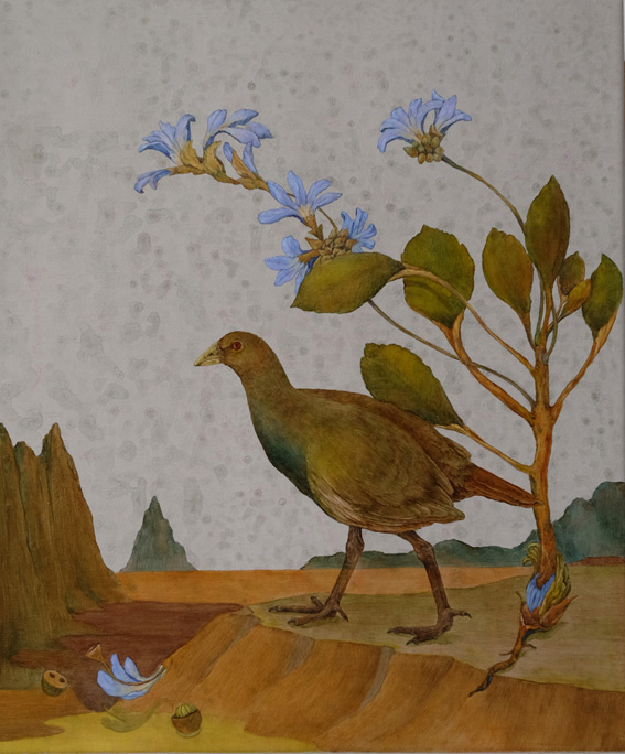 tasmanian native hen and scaevola  copy.jpg