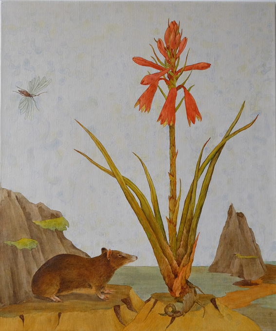 Southern Brown Bandicoot and Blandiflora punicea  copy.jpg