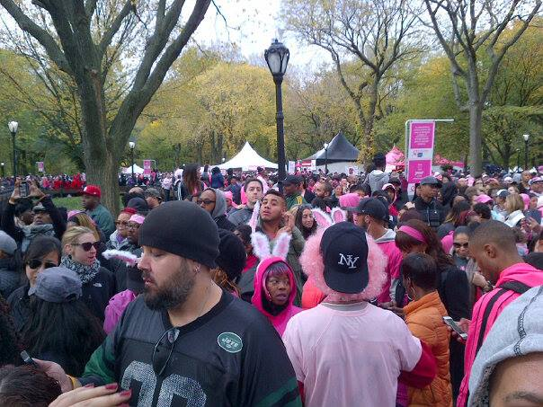American Cancer Society does an annual fundraising walk in Central Park called Making Strides.