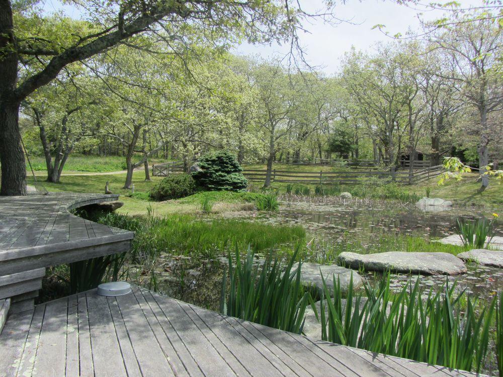 Pond_Early Spring.jpg