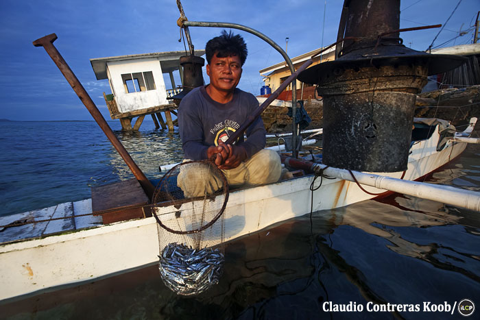 A fisher shows his catch. Dwindling fish stocks means fishers must catch smaller and smaller fish.