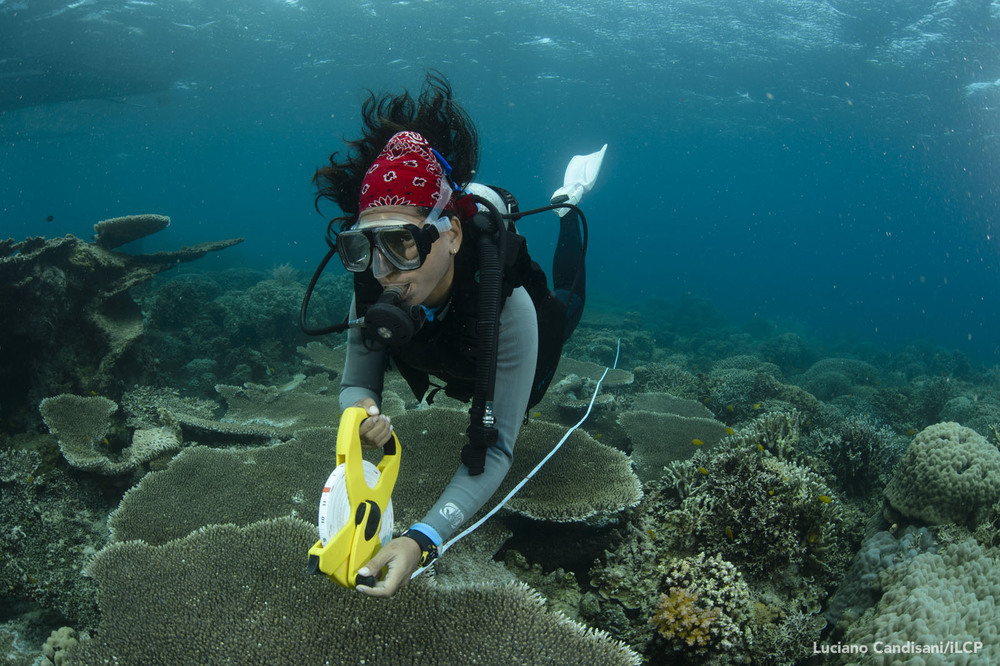 A Project Seahorse field biologist studies a stretch of coral reef. Research informs all of our conservation programs, including our MPAs.  Luciano Candisani/iLCP