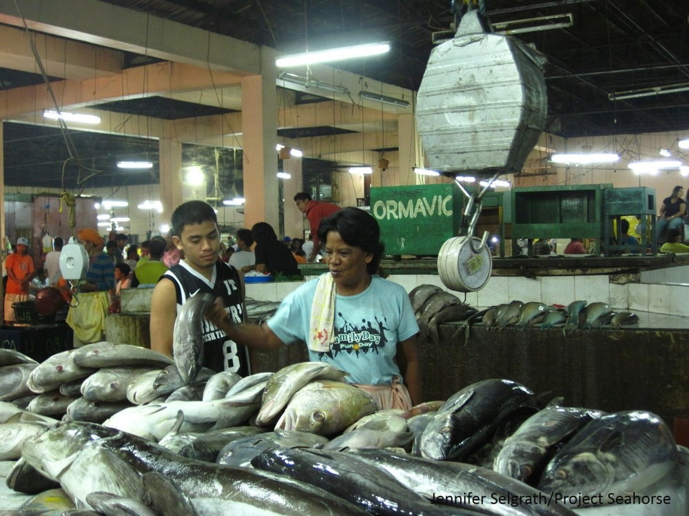 At the Pasil fish market in Cebu City large fish are sold to national and international buyers.