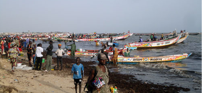 Fisheries in Senegal. Photo by Andres Cisneros-Montemayor/Project Seahorse.