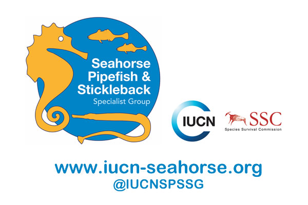 IUCN seahorse specialist group _with url etc.jpg