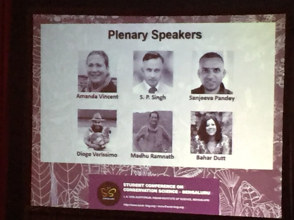 plenary SCCS.jpg