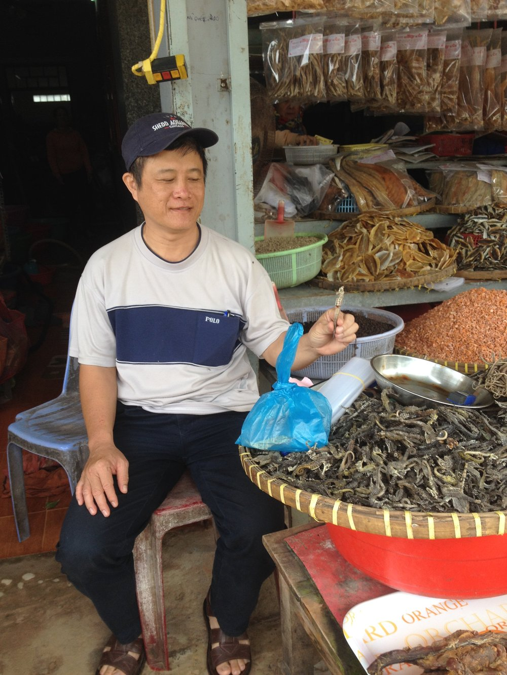 Our Project Seahorse researcher, Dr. Do Huu Hoang, sitting next to a large basket of dried seahorses in Song Cau, Phu Yen Province.  Dr. Hoang interviewed over 146 fishers, buyers and aquaculturists across eight provinces in Viet Nam from November 2016 to January 2017