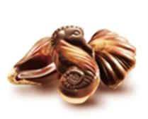 seahorsechocolates.fw.png
