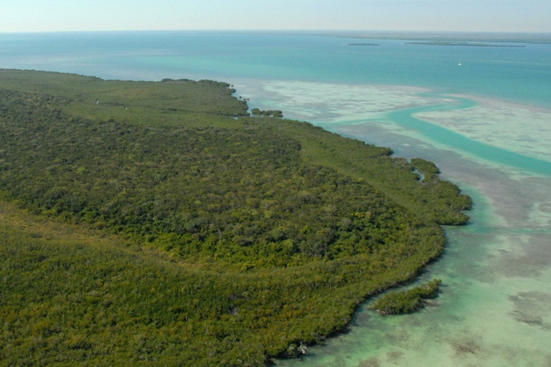 Totten Key, one of the uninhabited northern-most Florida Keys found in Biscayne National Park. Mangrove coastlines and seagrass beds seen in this aerial photograph provide potential habitat for seahorses and pipefishes. Photograph ©US National Parks Service