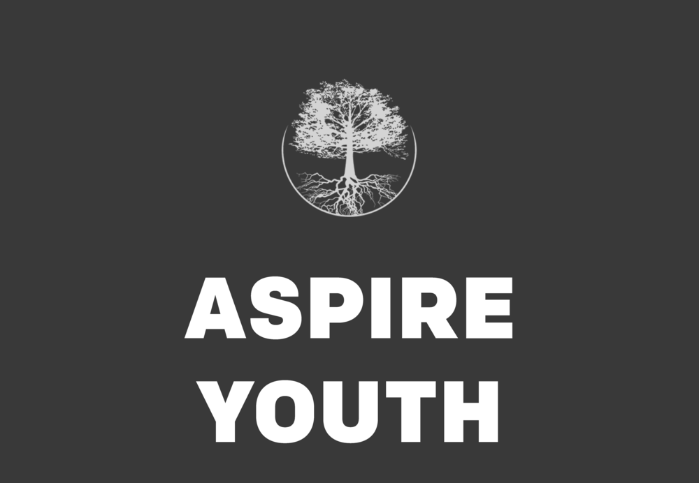 ASPIRE YOUTH WEBSITE.png