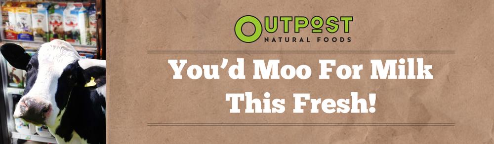 OutdoorOutpost3.jpg