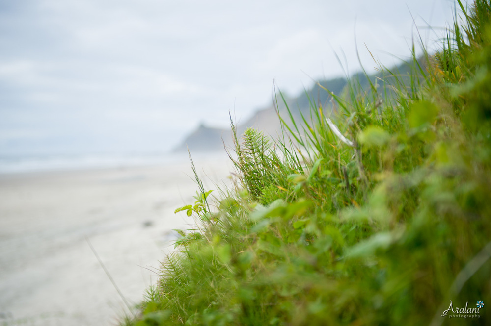 Oregon_Coast_Elopement_0027.jpg