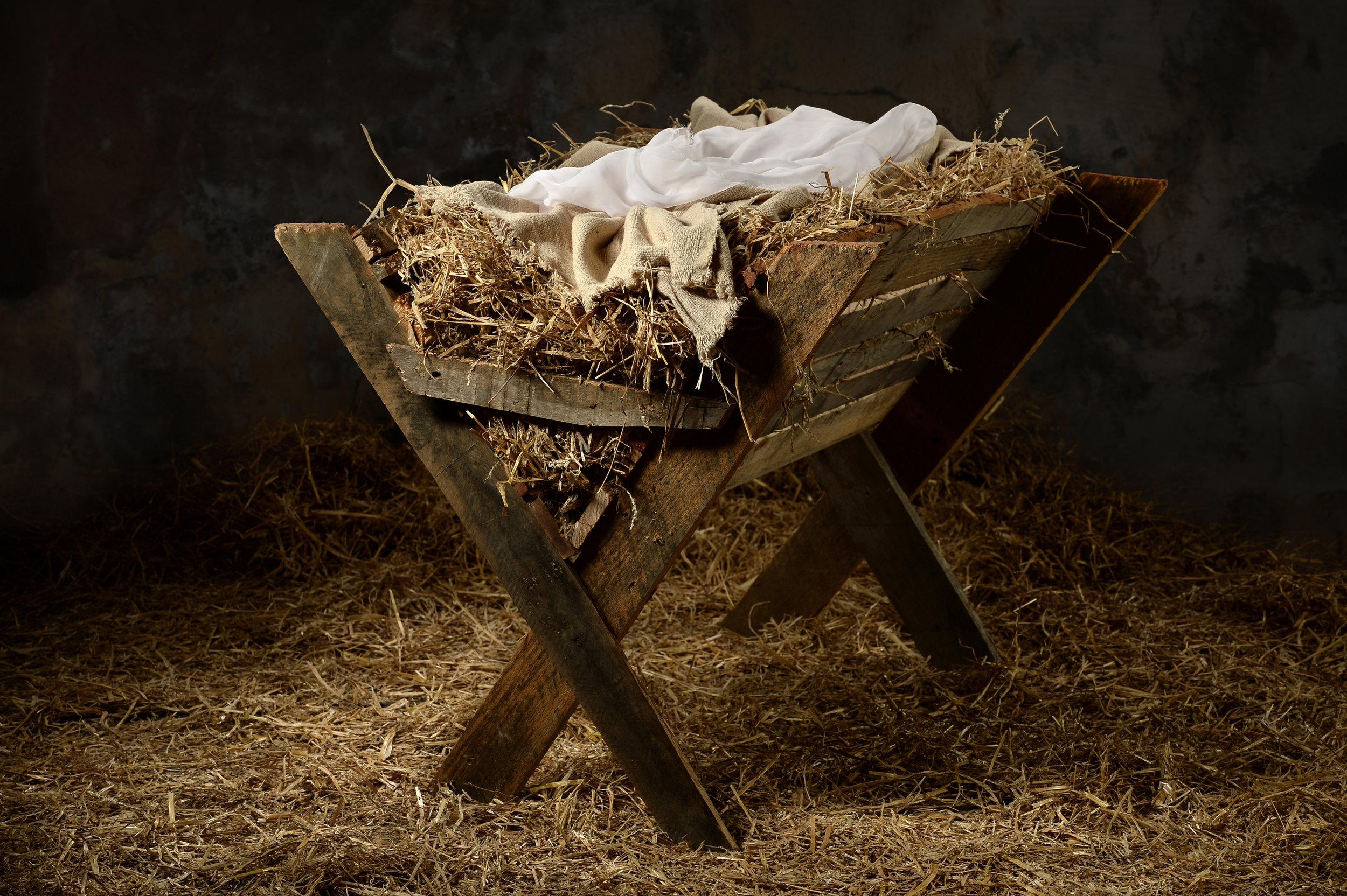 the meal in a manger christ hold fast