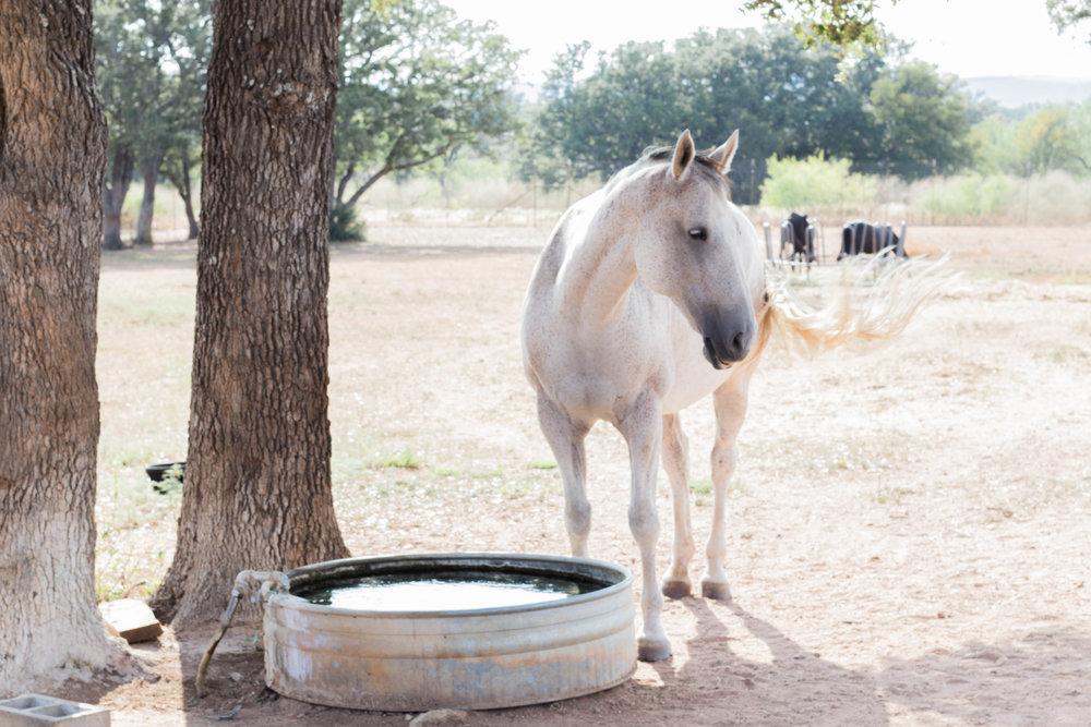 RanchSeptember-14.jpg