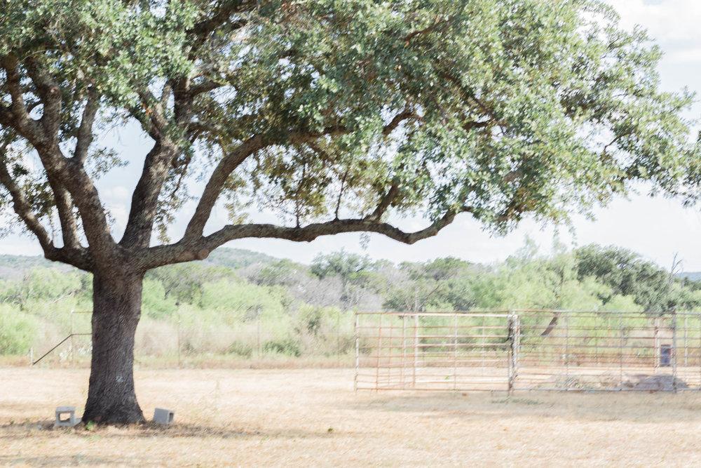 RanchSeptember-21.jpg