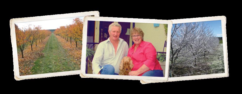 John and Maureen Newlands at Springbank Orchard