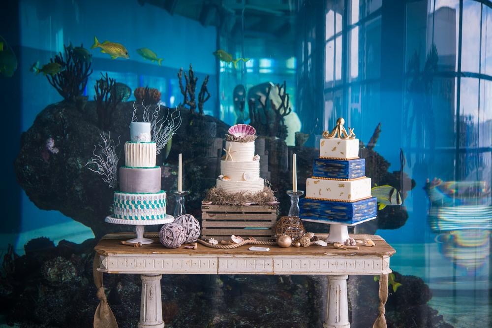 nautical sea glass wedding cake at south carolina aquarium
