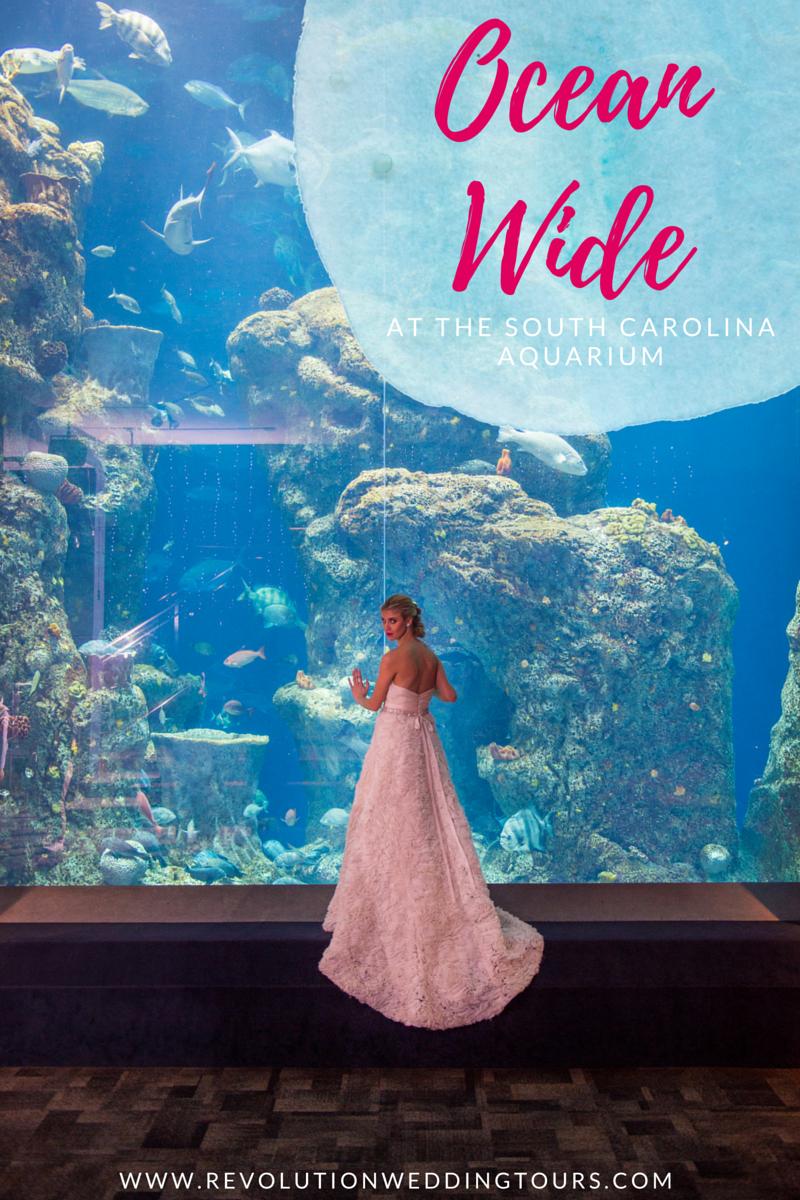 south carolina aquarium wedding by scarlet plan & design