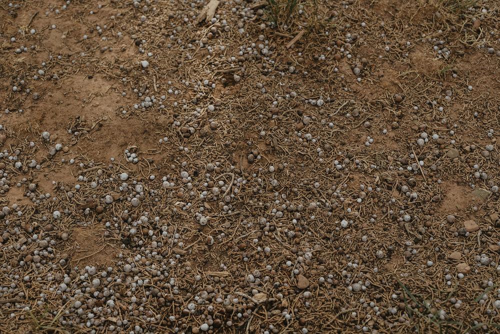 beehive-barebones-3-step-hideaway-hi-res-06725.jpg