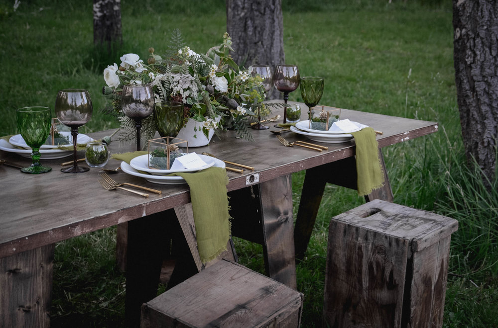 FOREST MEADOW WITH SAGE & THISTLE EVENTS       SEE MORE    →