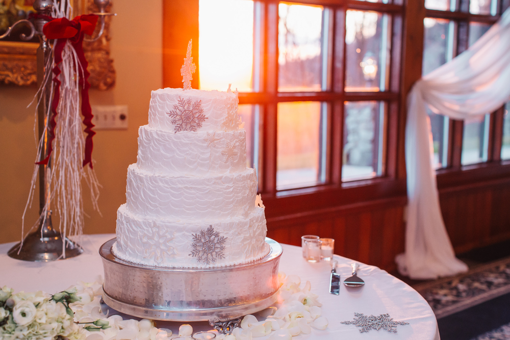 Ashley-reed-photography-pittsburgh-wedding-photographer-ashley-reed-pocconos-pa-mountain-top-wedding-107.jpg