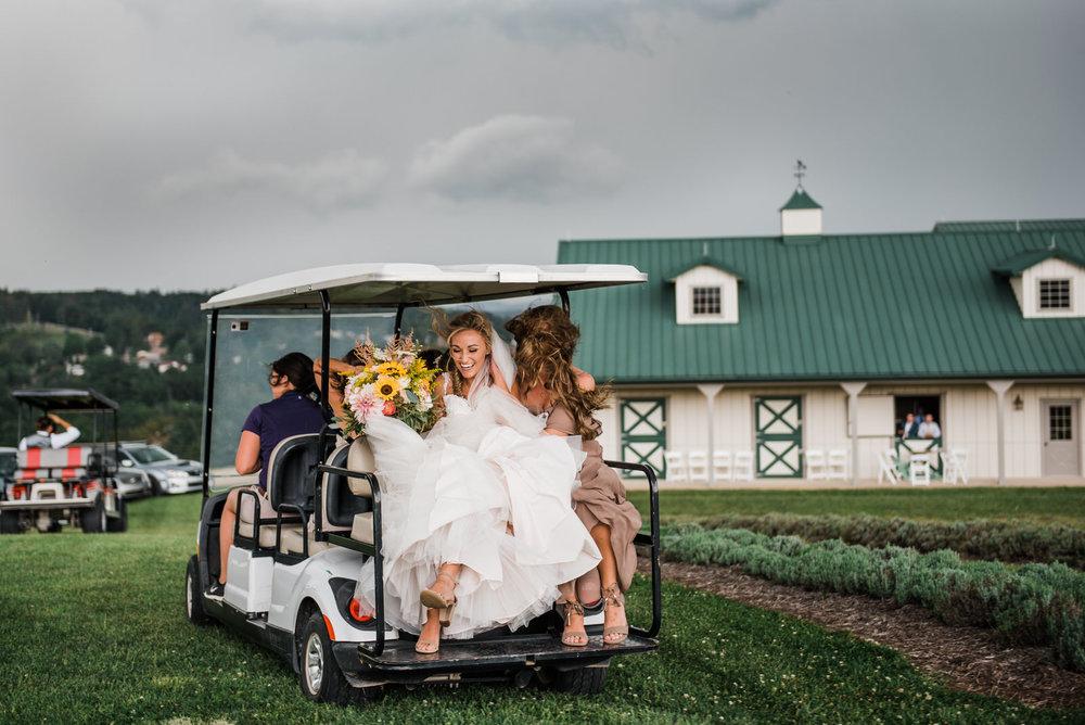 destiny-hill-farm-wedding-photos-pittsburgh-wedding-photographers-71.jpg