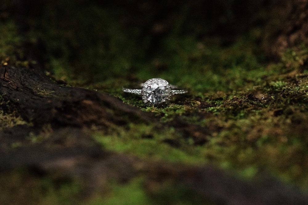 Ohio-Pyle-Engagement_Photos-Ashley-Reed_Photography_012.jpg