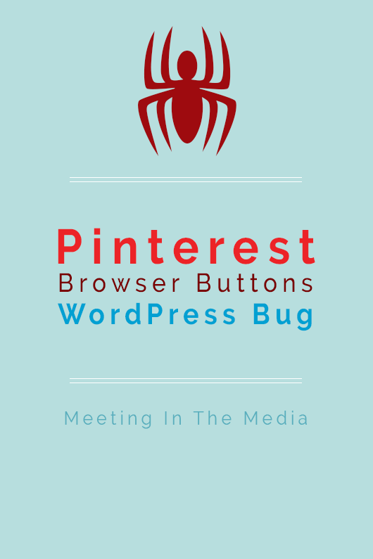 MeetingInTheMedia_Banner_Pinterest_WordPressBug.png