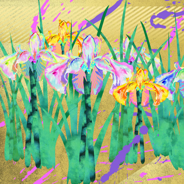 Hisahiro Fukasawa,  Irises