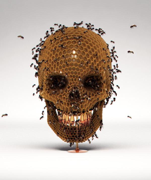 Luke Dwyer,  Skull Hive