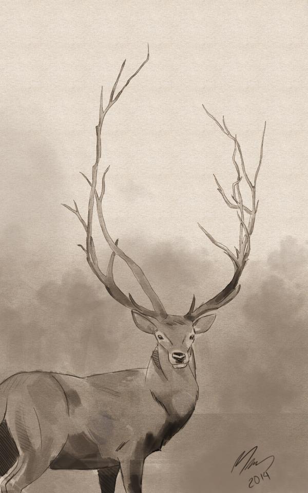 Mariana Garrido, Dear Deer
