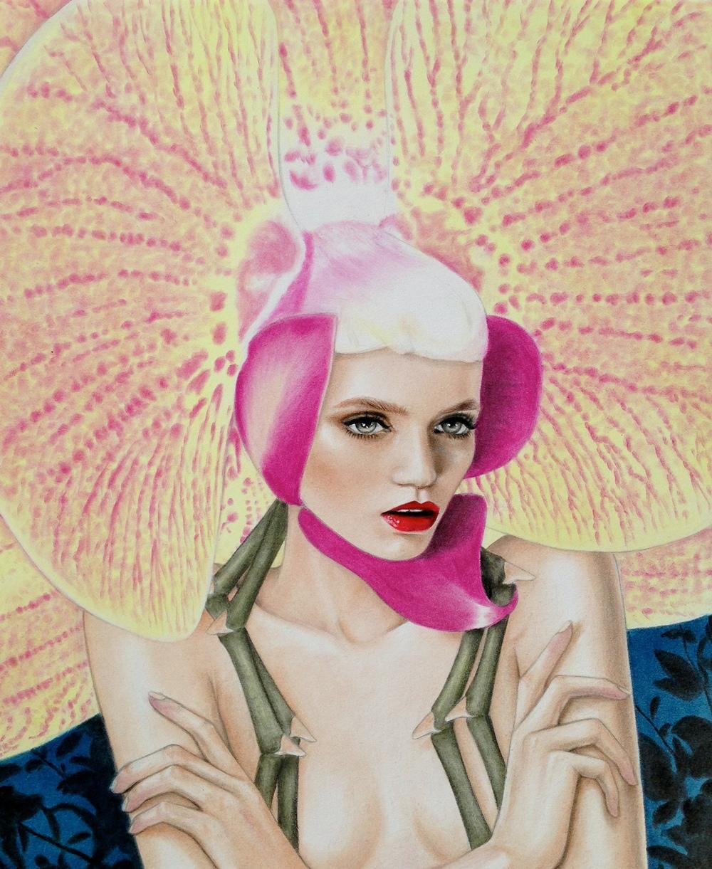 Julia Gabrielov,  Elusive Orchid