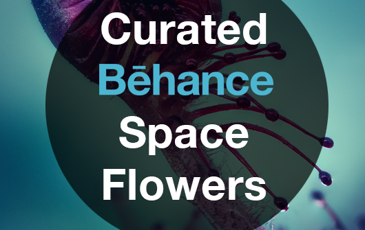 MeetingInTheMedia_Banner_Behance_SpaceFlowers_02_Crop.png