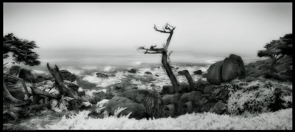 Monterey Coast III