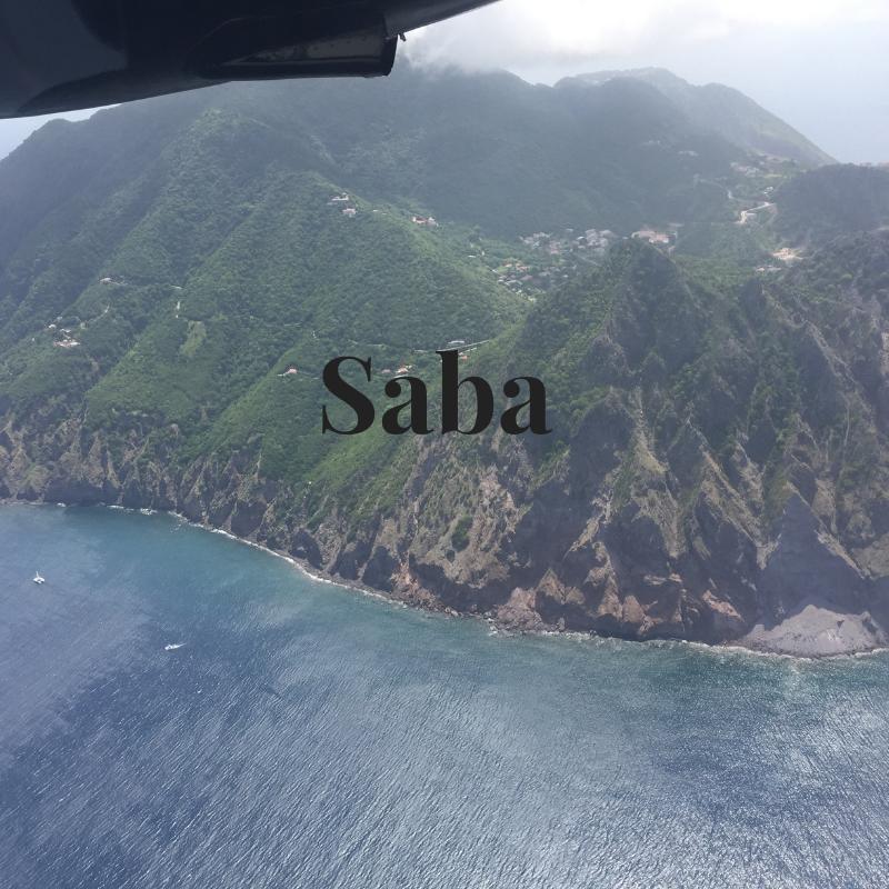 Saba - new.png