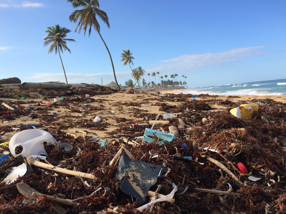 Picturesque beach now filled with plastic
