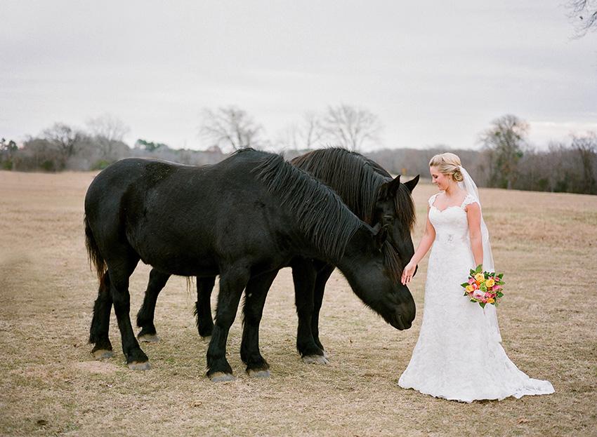 Elmwood.Gardens.Wedding.Photography