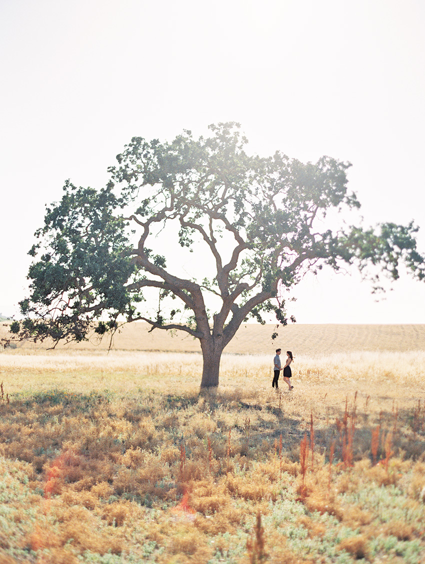 Los Olivos California Engagement Photography - Fine Art Film Wedding Photography - Krystle Akin