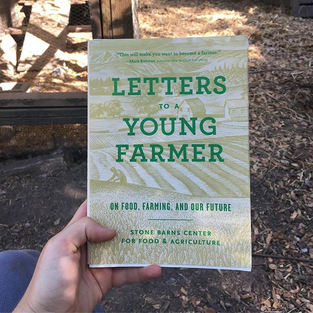 Where better to read this lovely book than in the chicken yard?! I can tell it's gonna take me a while to get through this book, even though it's so good, because every time I sit down to read it, I am instantaneously inspired to turn the compost, or tend to the chickens... 🐓It must be powerful stuff!!! Thanks to all the incredible voices who added their wisdom to this work. Love, this aspiring young farmer 💛 #letterstoayoungfarmer #carbonfarmers #wendellberry #joelsalatin @polyfacefarm