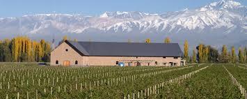 balbo winery