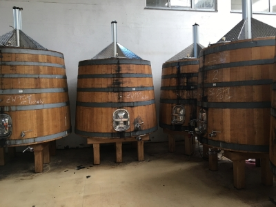 Red wine fermentation tanks