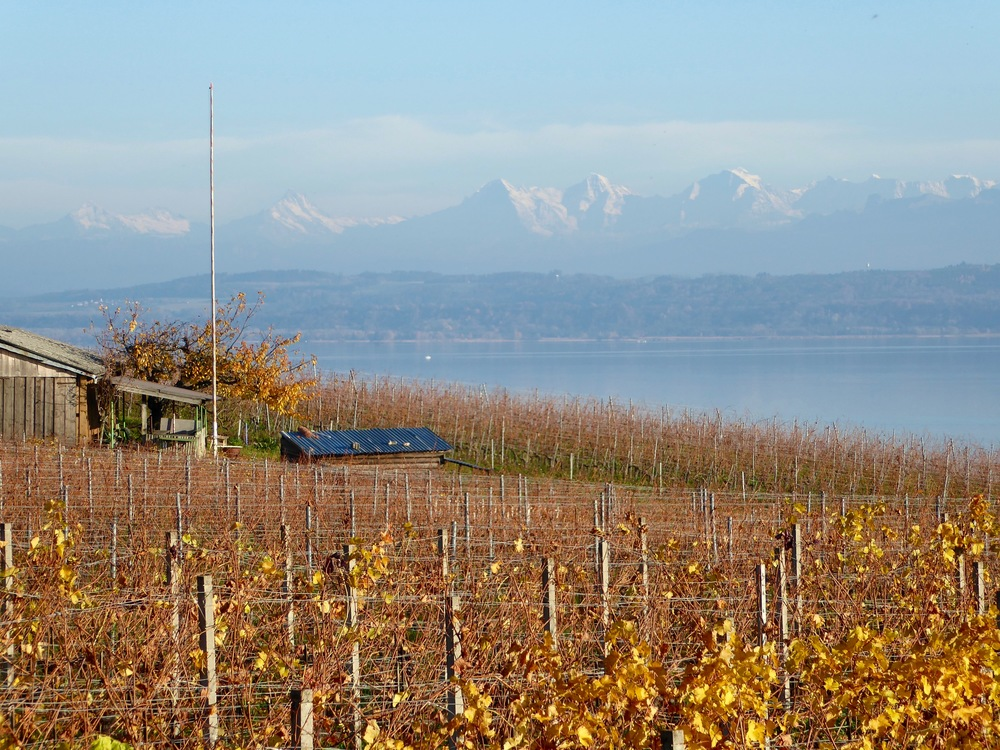 Peseux views over lac Neuchâtel, Switzerland, November 2015