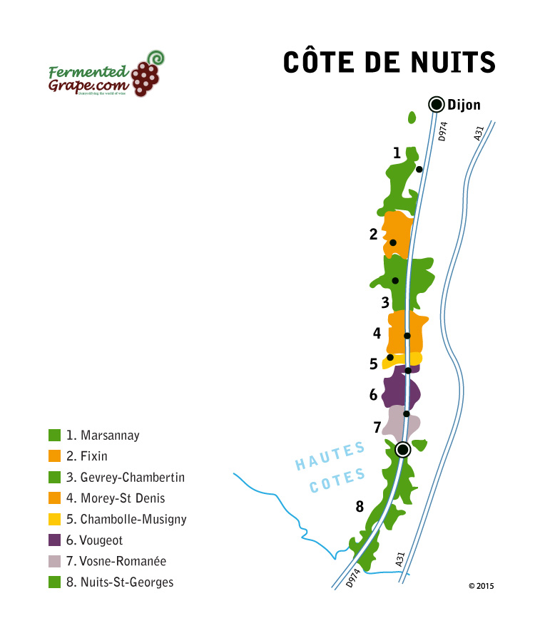 Côte de Nuits wine map by fermentedgrape.com
