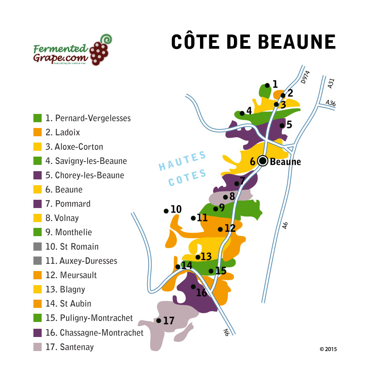 Côte de Beaune wine map by fermentedgrape.com
