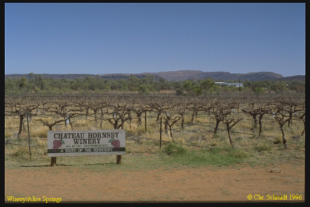 Chateau hornsby winery, alice springs, australia