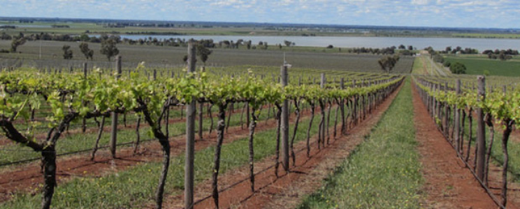 Heathcote australia wine region
