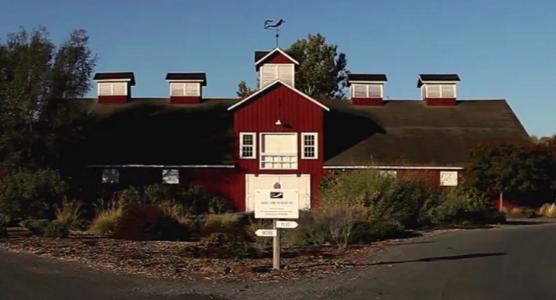 Frog's Leap winery, Rutherford, Napa Valley, Tripadvisor