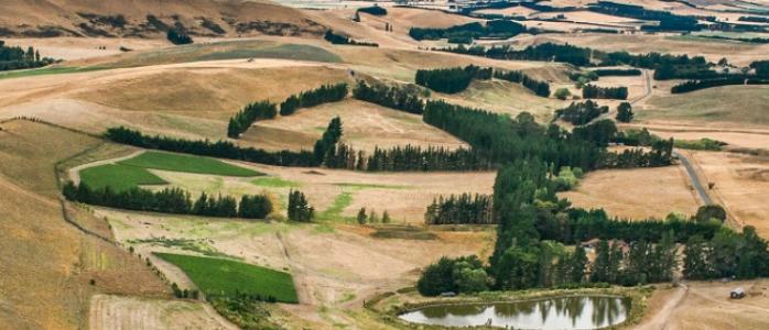Pyramid Valley Vineyards, Canterbury, NZ